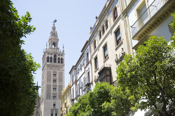"**Seville, Spain**  Spanish passion flows through the streets and the city boasts enough culture and history to match any other European destination. [Seville](https://www.contiki.com/au/en/destinations/europe/tours/spanish-spree-155#fS8oVX2xWJSH6Db4.97|target=""_blank"") should be top of your list. The unique city has a little bit of everything with canals reminiscent of Venice and Gothic architecture just like Berlin. Grab a fresh churro from a street cart to celebrate your own sweet moment!"