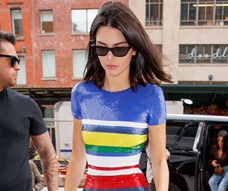 Kendall Jenner's dog reportedly bit a little girl