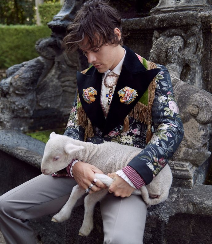 Harry Styles ft. Lamb. (Courtesy of Gucci)