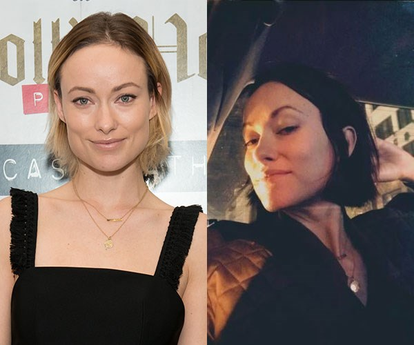 "**Olivia Wilde** <br><br> Bye, bye balayage! Olivia Wilde just debuted a new, darker hair colour on [Instagram](https://www.instagram.com/oliviawilde/|target=""_blank""