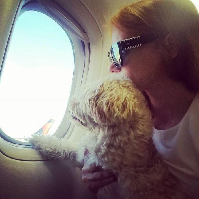 Jessica Chastain flew into Cannes with her furry friend, Chaplin.  *Image: [@jessicachastain](https://www.instagram.com/p/BUJefjph0D5/)*