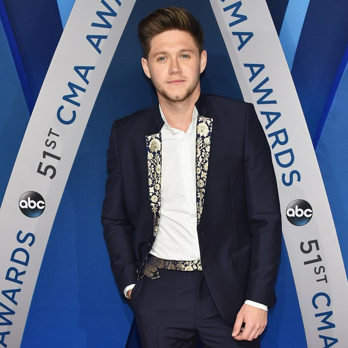 "**Niall Horan** <br><br> The 24-year-old singer and former member of One Direction has just been signed with famed modelling agency Wilhelmina Models.  <br><br> When speaking to [*Vanity Fair*](https://www.vanityfair.com/style/2017/11/niall-horan-modeling-wilhelmina-interview|target=""_blank""