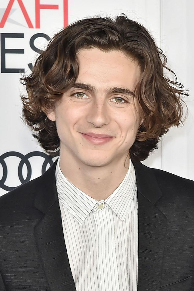 **Timothée Chalamet** <br><br> While 21-year-old Timothée is getting rave reviews for his [performance in *Call Me By Your Name*](https://www.elle.com.au/celebrity/call-me-by-your-name-lead-actor-timothee-chalamet-bio-15250) (there's Oscar buzz), we're also obsessed with his perfect brown waves.