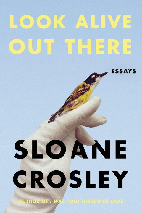 ***Look Alive Out There* by Sloane Crosley (April)** <br><br> Still thinking about that time Sloane Crosley gave her tyrannical boss a cookie illustrated with her own face? Same. (If you don't know the story, read *I Was Told There'd Be Cake* immediately.) You'll be pleased to know that there's more where that came from, in this forthcoming essay collection.