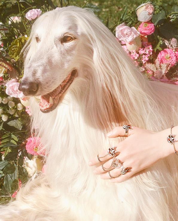 Fine jewellery.