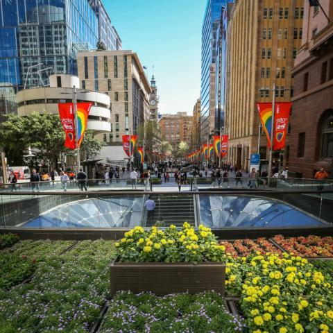 "[City of Sydney](https://whatson.cityofsydney.nsw.gov.au/events/living-colour-plant-giveaway|target=""_blank"")"
