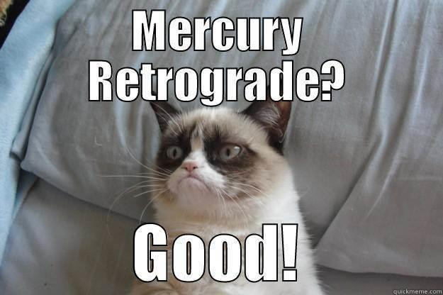 Mercury retrograde is a grumpy cat's dream.