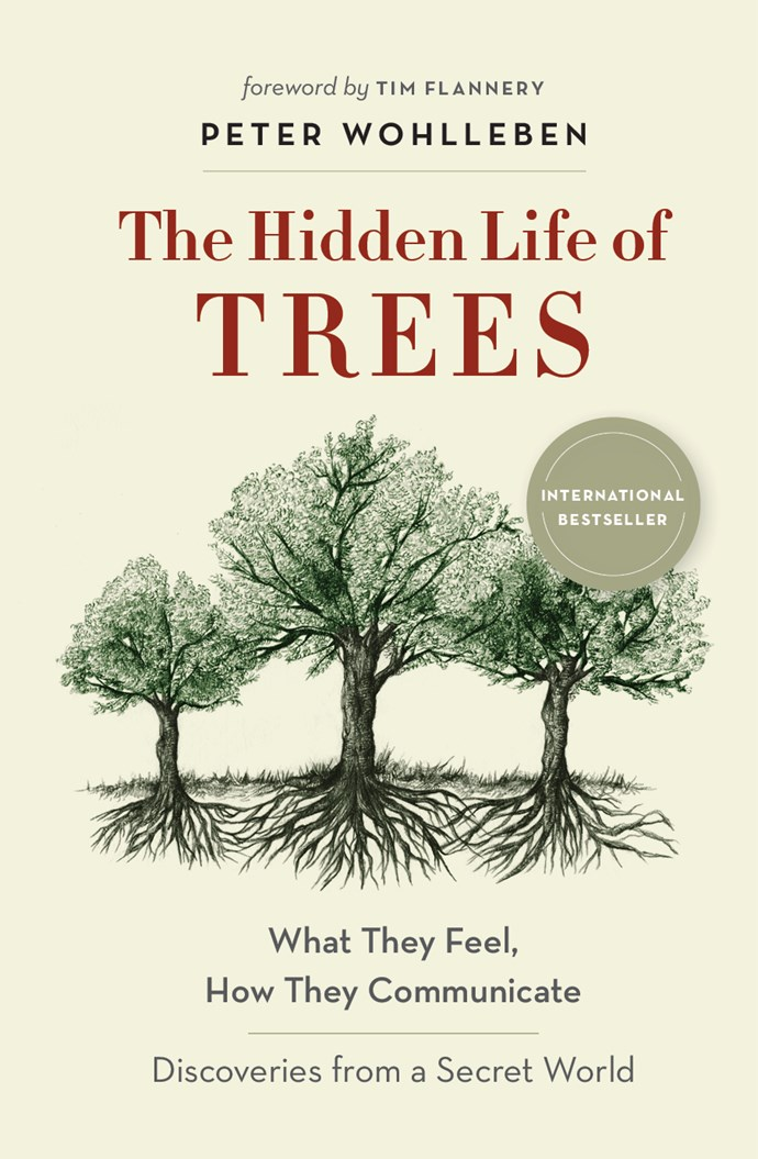 """This book discusses the secret lives of trees and how they have their own methods of communication.  <br><bR> *The Hidden Life of Trees* by Peter Wohlleben, $24.75 at [The Book Depository](https://www.bookdepository.com/The-Hidden-Life-of-Trees-What-They-Feel-How-They-Communicate---Discoveries-from-a-Secret-World-Peter-Wohlleben/9781863958738 target=""""_blank"""" rel=""""nofollow"""")."""
