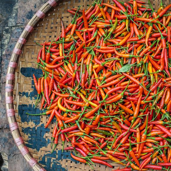 **Chilli Peppers** <br><br> The heat from spicy foods like chilli, cayenne pepper and capsicum not only burns the tastebuds, but it's also said to kick start the body into thermogenesis, helping to break down fat. Science has suggested that capsaicin, the compound in chillies that gives the little bastards their scorch factor, helps burn calories actually increase your metabolic rate as well as keep you feeling fuller for longer, therefore reducing the urge to snack on something naughty later.