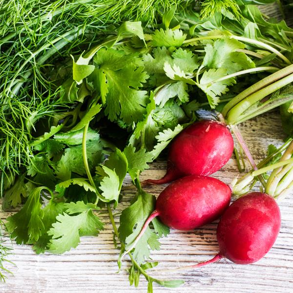 **Radishes** <br><br> They make a crunchy addition to any salad and are loaded with sulphur, silica and vitamin C, which promote healthy collagen. They also help stimulate the liver to help detoxify the body.