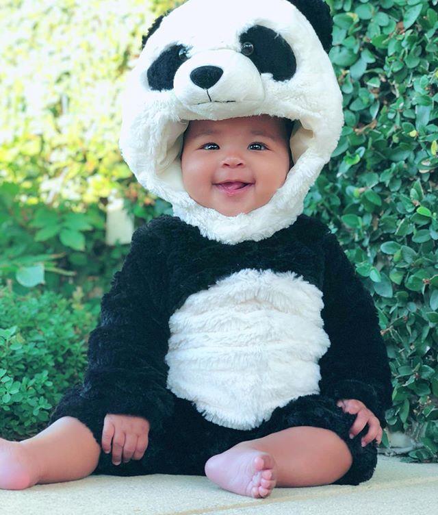 True Thompson as a panda.