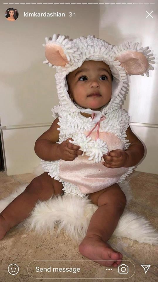 Chicago West as a sheep.
