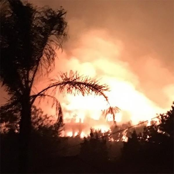 """***Tracey Bregman***<br><br> Actress Tracey Bregman posted a horrific image on Instagram of her house up in flames. """"Last picture of my house. Thank God we are all safe. I have no other words. I'm just numb for us all,"""" she wrote."""