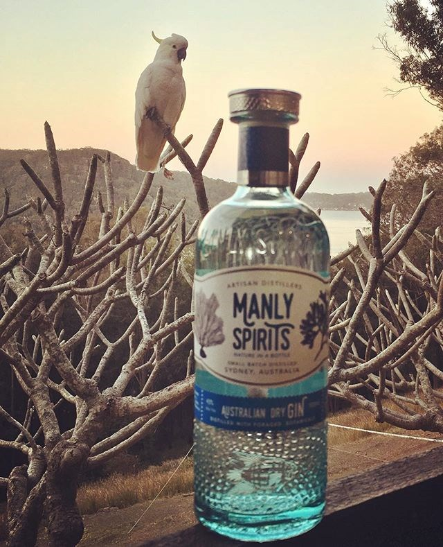 "***[Manly Spirits Co. Gin](https://manlyspirits.com.au/|target=""_blank""