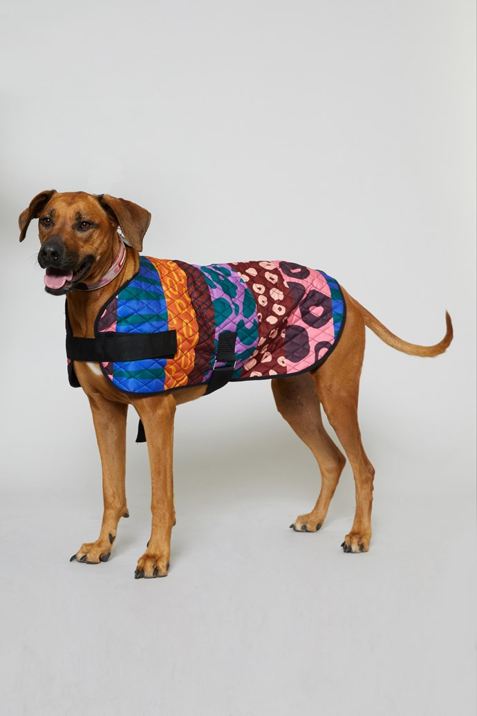 "60 cm 'Walk It' Dog coat, $49 from [Gorman x PetRescue](https://www.gormanshop.com.au/shop/pet-rescue-x-gorman/60cm-walk-it-dog-coat.html|target=""_blank""