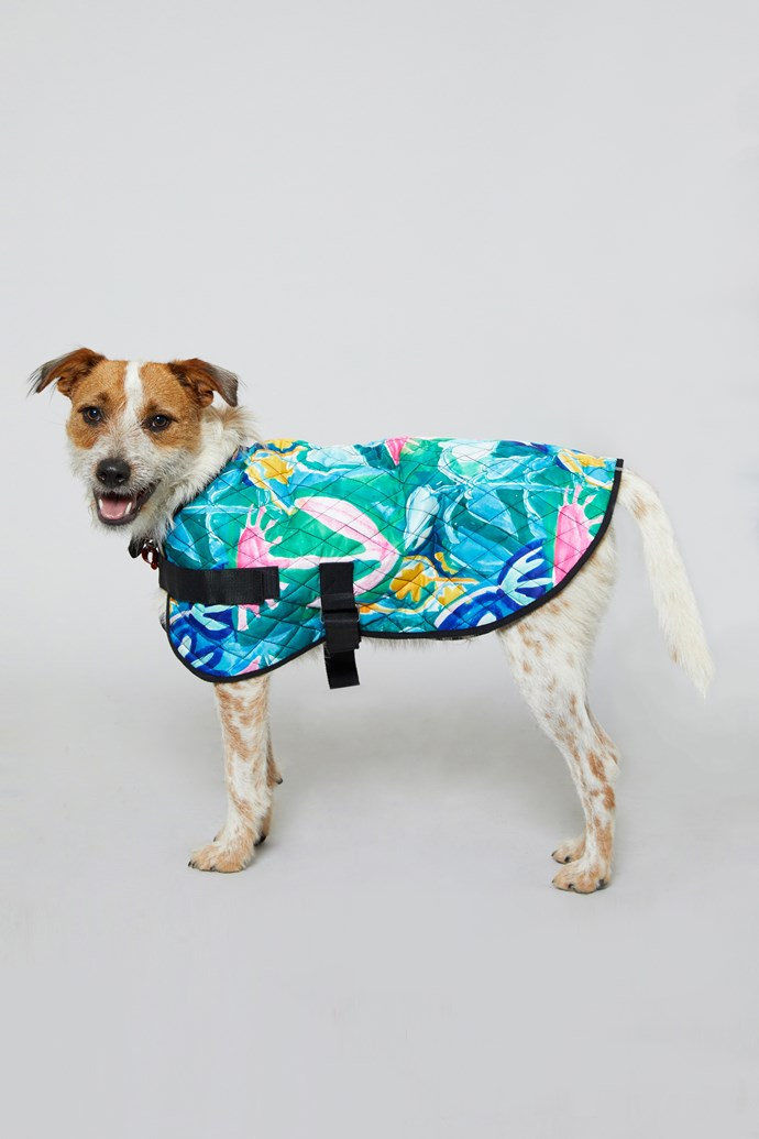 "30 cm 'Neighbours Garden' Dog Coat, $39 from [Gorman](https://www.gormanshop.com.au/shop/pet-rescue-x-gorman/30cm-neighbours-garden-dog-c.html|target=""_blank""