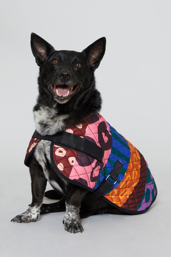"40 cm 'Walk It' Dog Coat, $49 from [Gorman x PetRescue](https://www.gormanshop.com.au/shop/pet-rescue-x-gorman/40cm-walk-it-dog-coat.html|target=""_blank""