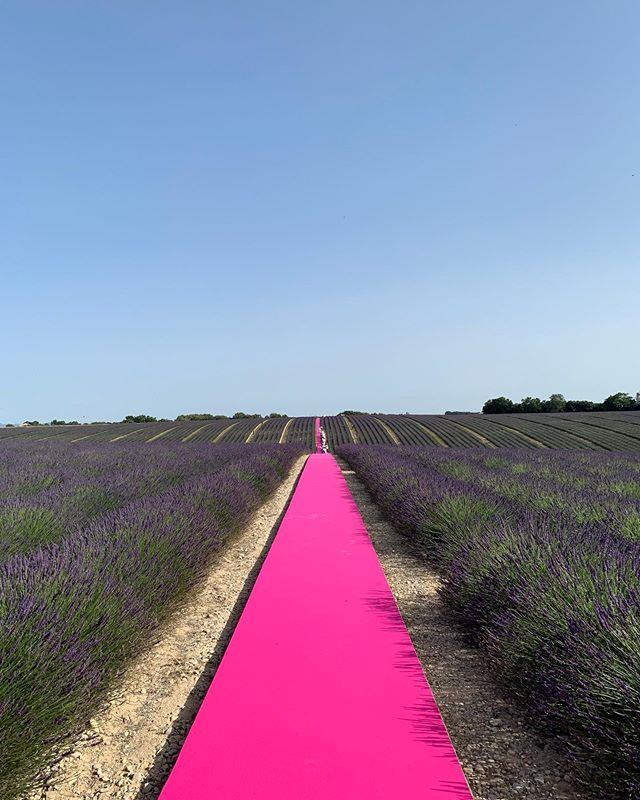 The set at Jacquemus spring/summer '20 in Valensole, Provence, France.