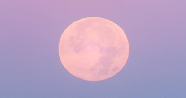 Full Sturgeon Moon In August: What Does It Mean For Your Star Sign? | ELLE Australia