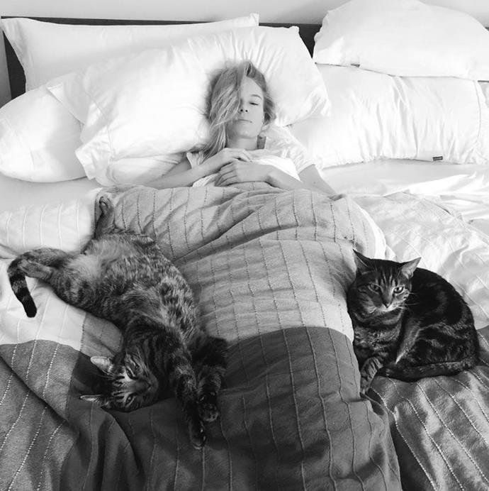 Kate Bosworth in bed with her cats.