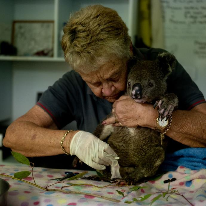 "**Michaela Skovranova, *National Geographic*** <br><br> ""Volunteers from the Port Macquarie Koala Hospital have been working alongside National Parks and Wildlife Service crews rescuing koalas who have been affected by the devastating bushfires across New South Wales and Queensland. Koalas rescued from fire grounds are brought back to the hospital for treatment and often require additional home care. <br><br> Barbara Barrett, or Barb has she is known, has been looking after a beautiful young male named Baz. Baz requires regular bandage changes as his bushfire wounds slowly heal. He is expected to make a full recovery, however it is uncertain if he will be able to be released. <br><br> Koalas rely on specialised gut microbes to break down the specific eucalyptus species that are found in their home area. Young koalas pick up these microbes from their mothers by eating a specialised type of feces called pap. With such devastating habitat loss, it's hard to know what will be left for the koalas to feed on. <br><br> I believe this image resonated because it's full of selfless love. The way that Barb held Baz and the way she looks after his wounds, you can feel that Baz trusts her and feels comfortable in this foreign environment. For me, this is the beautiful side of humanity and a wonderful showcase of how Australians have come together to help each other and the environment. <br><br> It was a very emotional moment for me after seeing the absolute devastation caused by the fires in the Northern NSW late last year. For me, it's important to document and share gentle stories amongst the heartbreak."" <br><br> *Image: Michaela Skovranova*"