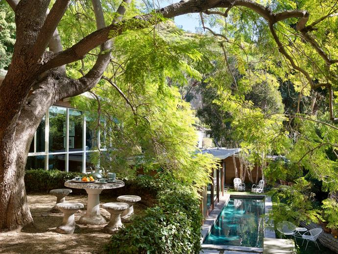"""The elevated courtyard overlooking the lap pool. <br><br> *Image by Simon Upton for [Architectural Digest](https://www.architecturaldigest.com/story/step-inside-dakota-johnsons-midcentury-modern-home