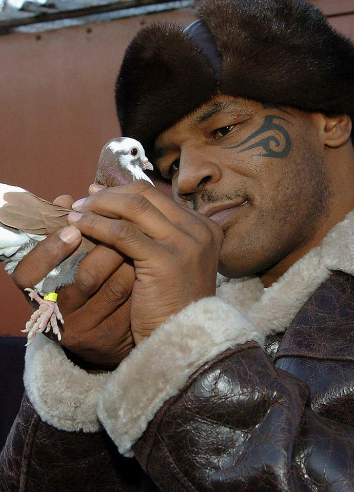 **Mike Tyson: *Pigeon racing*** <br><br> Retirement often compels people to take on new hobbies, however, pigeon racing is definitely an unexpected one. Most likely because not many people (including us) know that is exists. Well, not only does Tyson attend a pigeon pageant every year in Canada, but he's apparently pretty good at it too. The former boxer is known to be quite dedicated to maintaining and training his birds and even hopes that the sport will become more popular with the younger generation. Here's hoping?