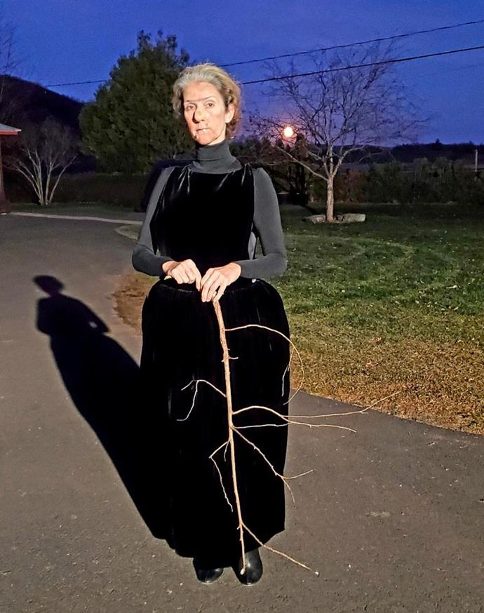Celine Dion as an old witch.