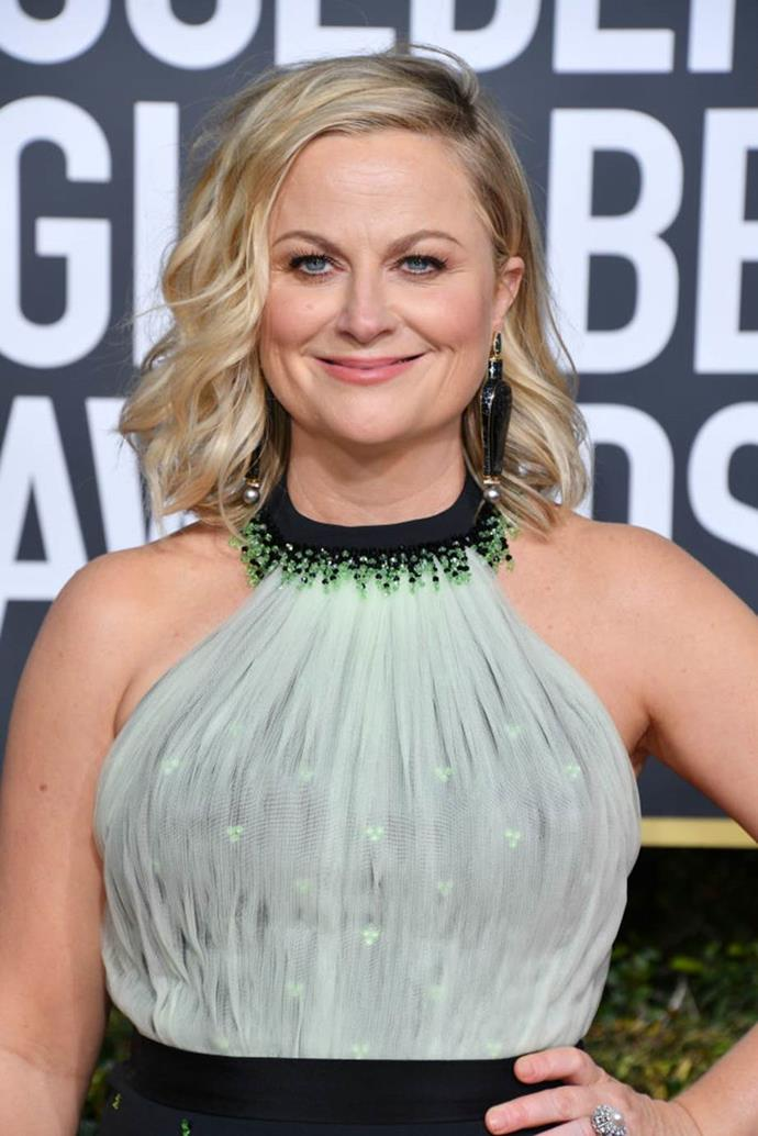 **Amy Poehler** <br><br> The comedian and actress graduated with a degree in media and communications from Second City, which is where she met Tina Fey.