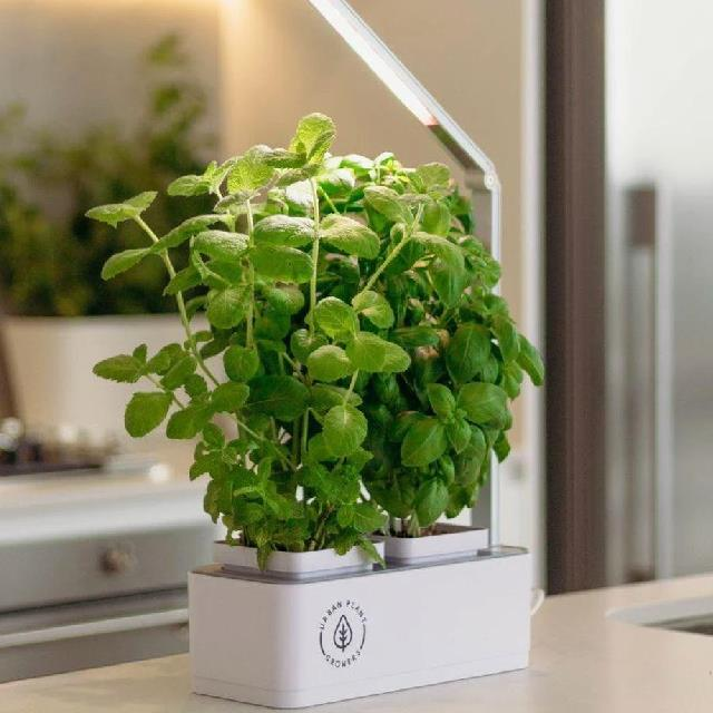 "Indoor Smart Garden, $89.99 at [Urban Plant Growers](https://www.urbanplantgrowers.com/products/indoor-smart-garden-combo-kit|target=""_blank""