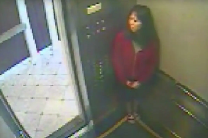 A still from the infamous surveillance video of Elisa Lam at the Cecil Hotel in 2013. *Image: Netflix*.
