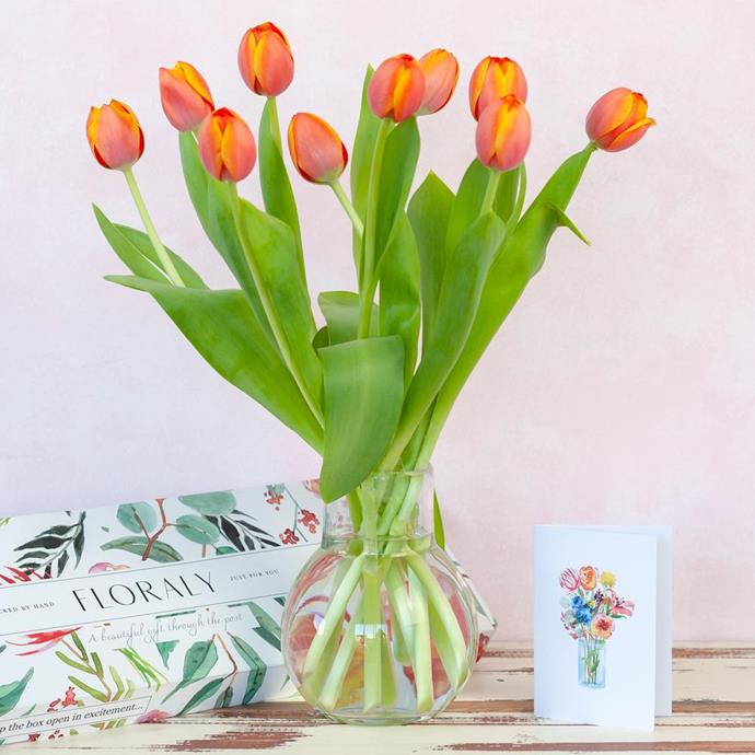 """*Orange tulips, starting at $49 from [Floraly](https://go.skimresources.com?id=105419X1569491&xs=1&url=https%3A%2F%2Fwww.floraly.com.au%2Fcollections%2Fsend-flowers-australia%2Fproducts%2Forange-tulips target=""""_blank"""" rel=""""nofollow"""").*"""
