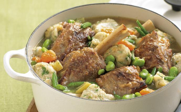Lamb Shank Braise with Parmesan Dumplings