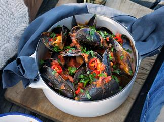 Mussels in chilli tomato broth