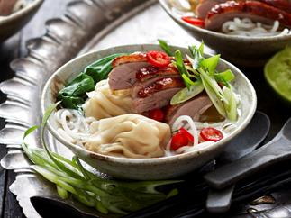 Duck, wonton and noodle broth