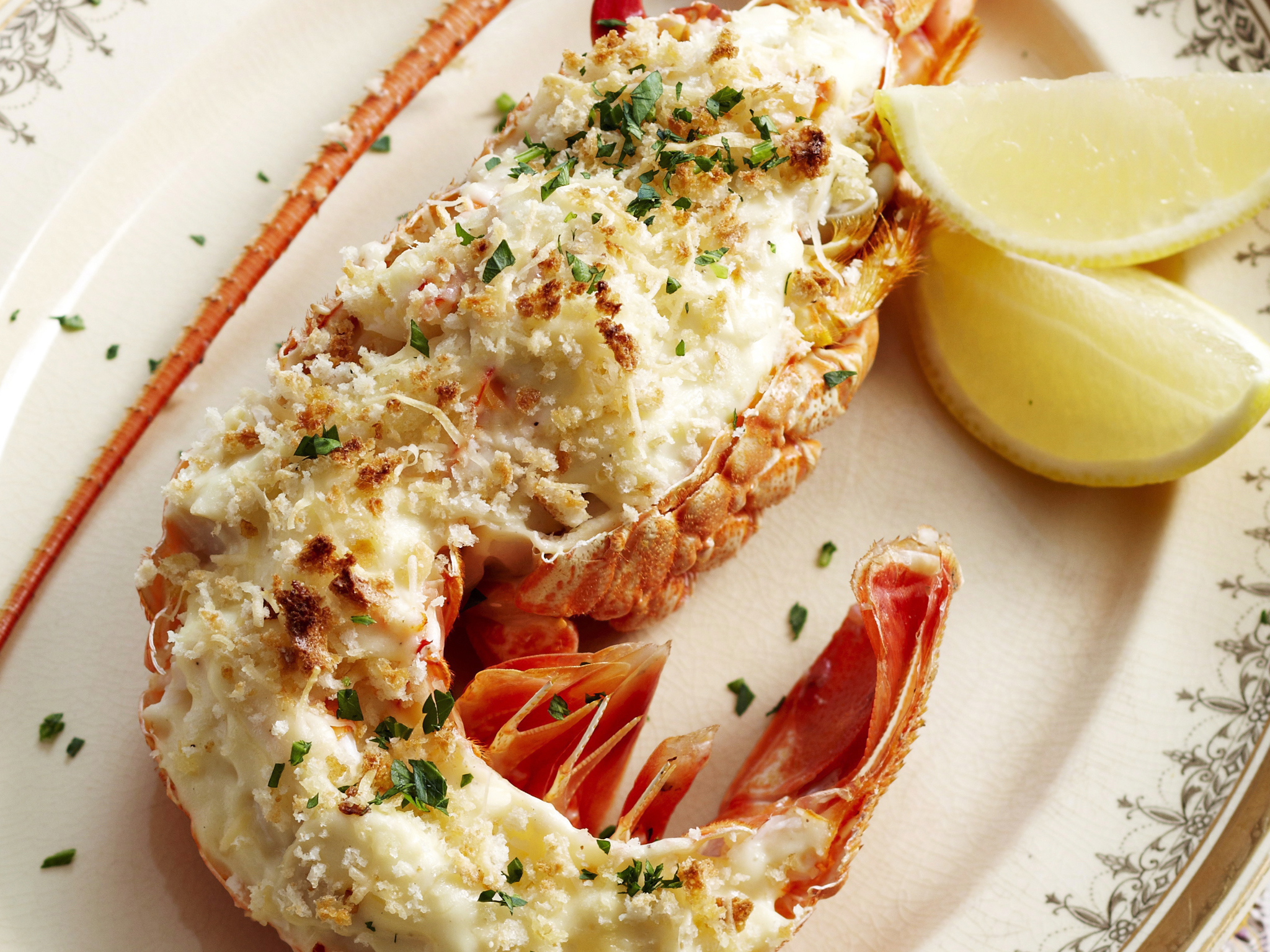 The gallery for --> Gourmet Lobster