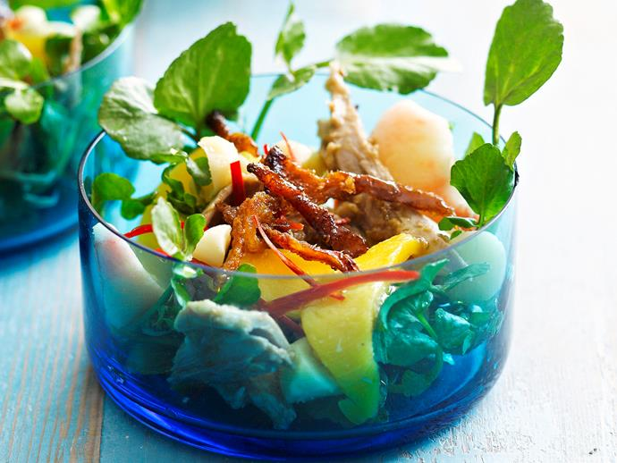 """**[Duck and mango salad](https://www.womensweeklyfood.com.au/recipes/duck-and-mango-salad-28421 target=""""_blank"""")**  The spices of chilli, ginger and cumin contrast against sweet mango in this fresh duck salad, perfect for lunch or a starter at a dinner party."""