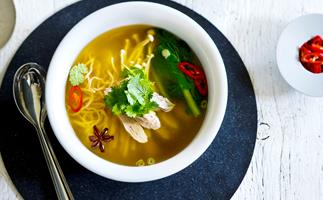 duck and noodle soup