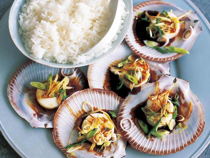 "**[Steamed sesame scallops](https://www.womensweeklyfood.com.au/recipes/steamed-sesame-scallops-11362|target=""_blank"")**  Plump, juicy and fragrant with sesame oil, these sea scallops make a delightful starter for a special dinner."