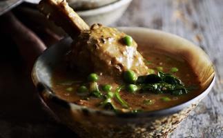 lamb shank and spinach korma curry