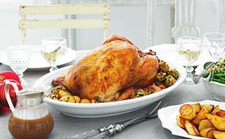 turkey with lemon parsley stuffing