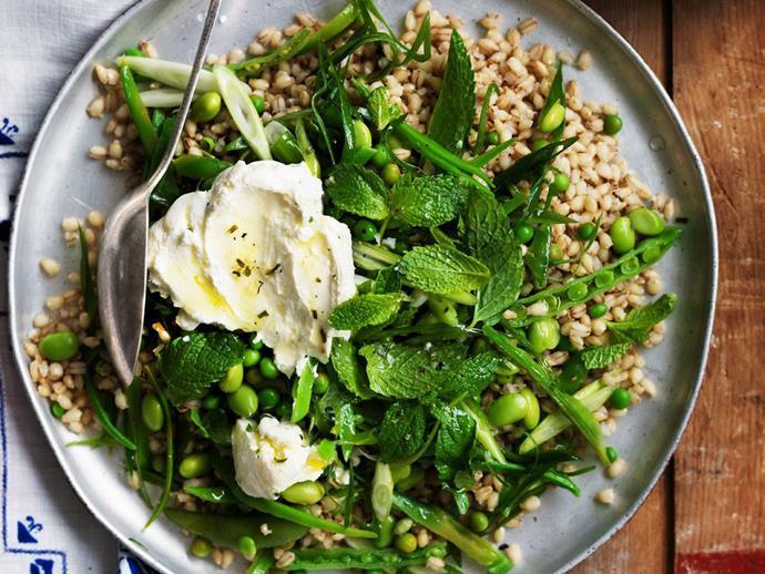 "**[Green barley](https://www.womensweeklyfood.com.au/recipes/green-barley-9372|target=""_blank"")**"