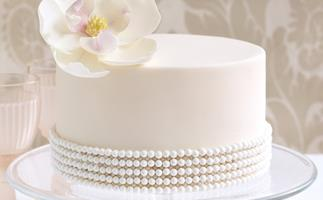 magnolia & Pearls