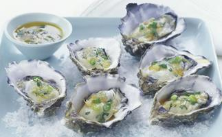 Oysters with lime and coriander