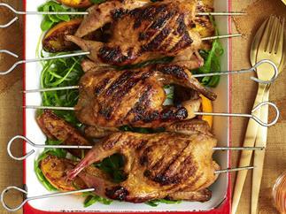 honeyed orange quail