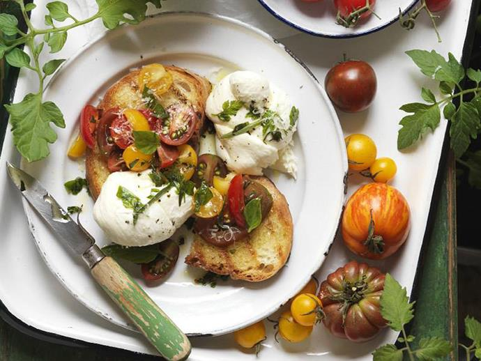 "**[Tomato bruschetta](https://www.womensweeklyfood.com.au/recipes/tomato-bruschetta-11940|target=""_blank"")**  No antipasto plate is complete without a serving of bruschetta. This tomato version may look simple, but the addition of fresh herbs and mozzarella take this classic dish to new heights."