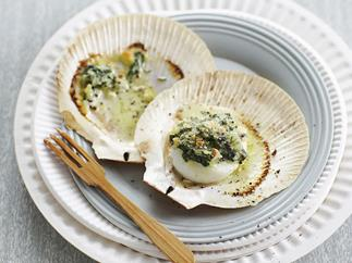 spinach and mustard scallops