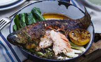 trout with lemon & thyme butter