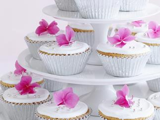 white chocolate mud cakes