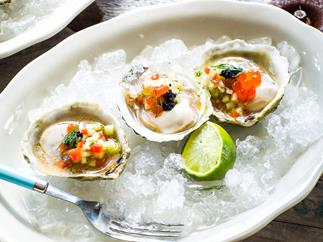 Bluff oysters with cucumber and dill